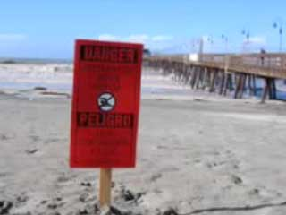 WiLDCOAST exposes the toxic waste and sewage that fouls beaches along the U.S.-Mexico border that makes kids sick and makes those beaches among the most polluted in North America.